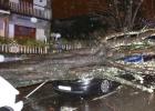 Los destrozos en Vigo