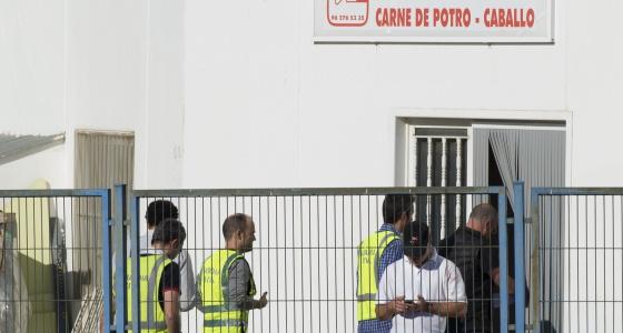La Guardia Civil inspecciona una de las fábricas de carne de caballo.