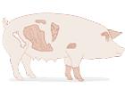 China quiere las tripas y los despojos del cerdo español