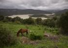 La Almoraima, el gran latifundio público de Cádiz, no se vende