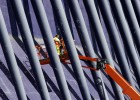 La última gran obra de Calatrava para Camps necesita 10 millones