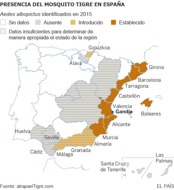 El mosquito tigre en España