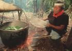 O misterioso poder da ayahuasca