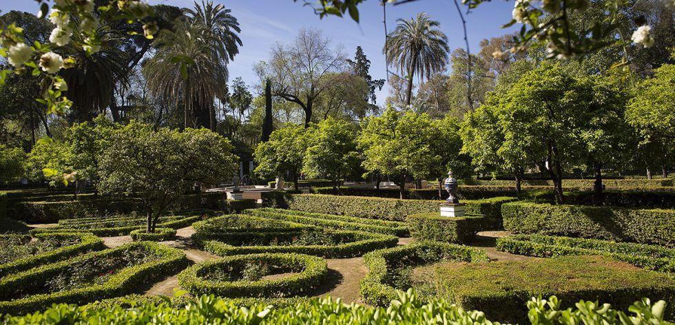 Parque de María Luisa en Sevilla donde se produjo el homicidio.