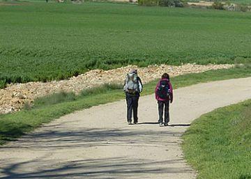 La Guardia Civil busca a una peregrina alemana perdida en el Camino de Santiago