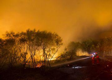 Los incendios devastan el 37% de la superficie quemada en 10 años