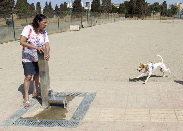 Málaga replantea el parque canino para evitar la fosa