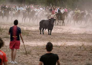Tordesillas sustituye el Toro de la Vega por un 'encierro' sin muerte