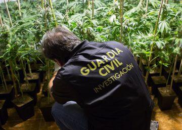 Granada, paraíso de la marihuana