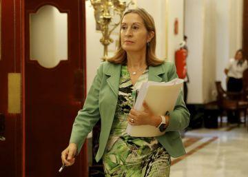 Pastor bloquea el pleno del 'caso Soria' con la ayuda de Ciudadanos