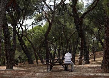 España, un país envejecido y lleno de hogares solitarios