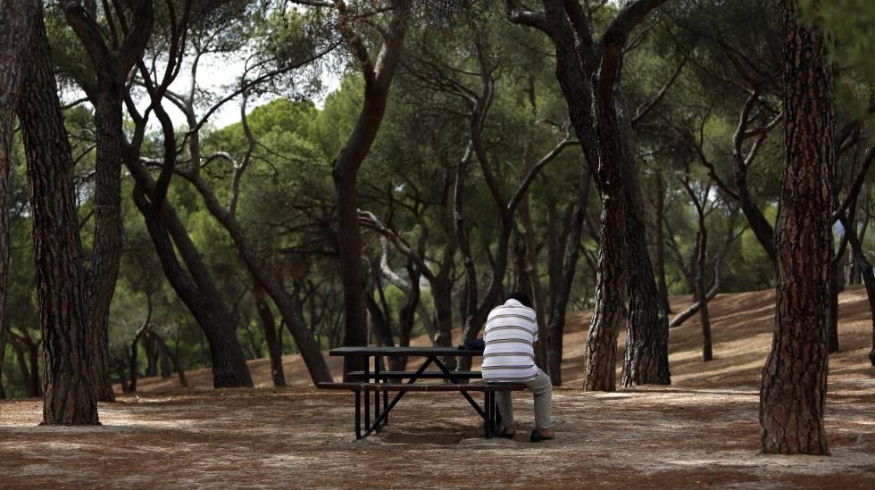 Un hombre de espaldas sentado en una mesa del parque de la Dehesa de la Villa.