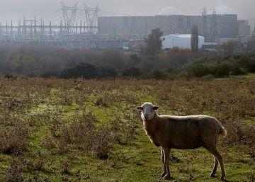 Las centrales recurren a sus almacenes nucleares ante el parón de Villar de Cañas