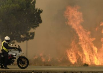Authorities optimistic about blaze at Spain's Doñana National Park
