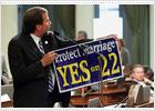 Arnold Schwarzenegger vetará el matrimonio homosexual en California