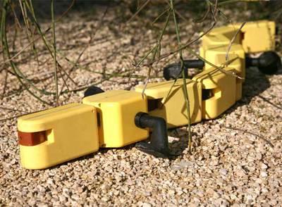 El robot salamandra.