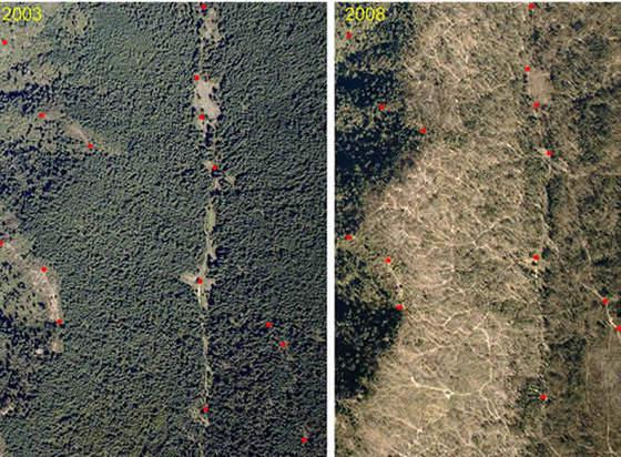 Imágenes tomadas por satélite de la zona llamada Crescencio Morales.
