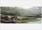 La serpiente más grande vivió hace 60 millones de años en Colombia y era tan larga como un autobús