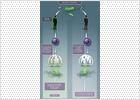 Descubierta la vía de ataque de la salmonela en enfermos de sida
