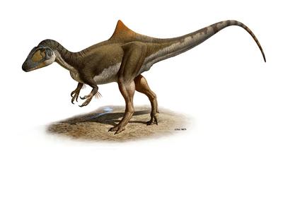 Reconstrucción del dinosaurio carnívoro 'concavenator', cuyo esqueleto fósil se ha descubierto en Las Hoyas (Cuenca).