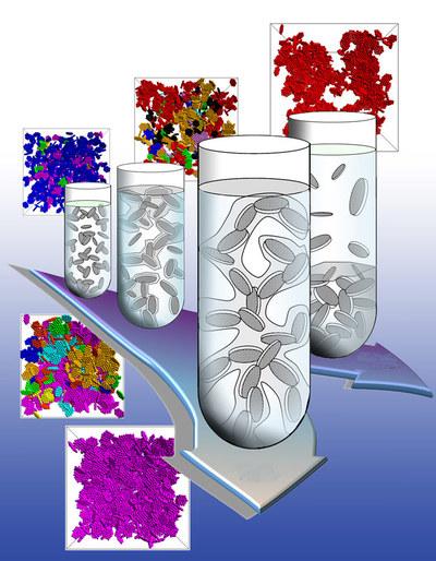 Las vías para la formación de un gel de equilibrio (la segunda fase) y la separación de fases, con el tiempo.