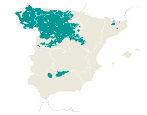 Distribución del lobo en España.