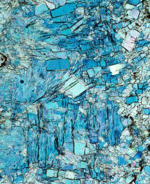 Cristales de yeso vistos al microscopio; imagen elegida para la portada de la revista 'Science'.