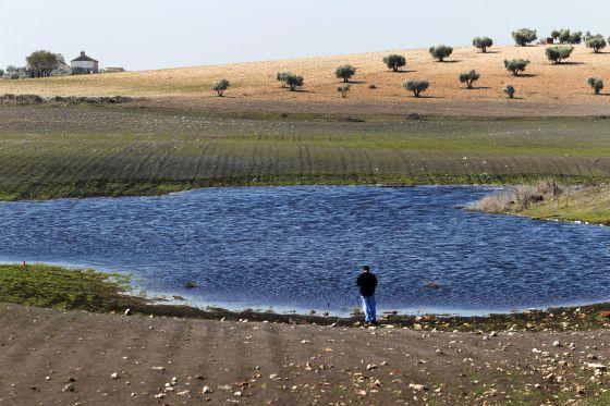 El agua subterránea vuelve a emerger en los Ojos del Guadiana pese a la sequía. La fotografía fue tomada en marzo pasado junto al molino de Zuacorta, en Ciudad Real.