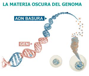 Los científicos descubren los secretos ocultos del ADN