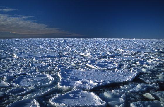 El hielo ártico es cada vez más fino.
