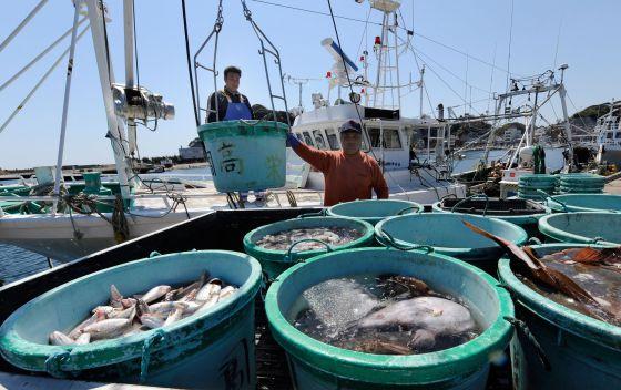 Pescadores desembarcan en un puerto al sur de Fukushima.