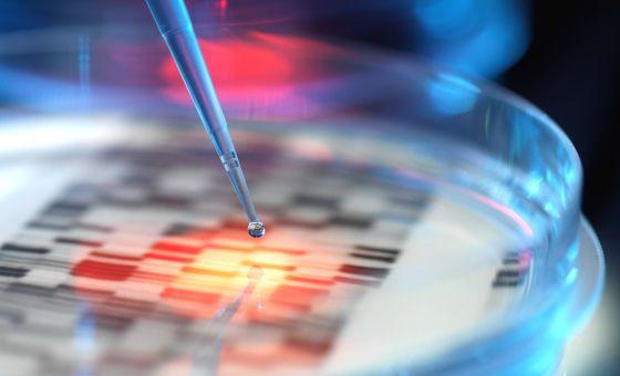 El genoma humano tiene cerca de 3.000 millones de letras del ADN.