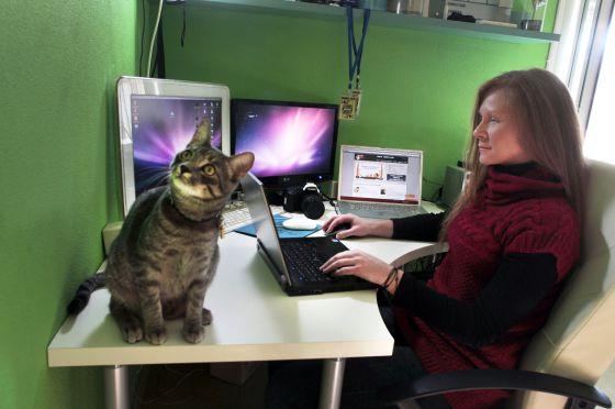 Pilar García va a la sede de su empresa, ASP Gems, dos días a la semana. El resto del tiempo trabaja desde casa.
