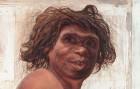 El 'Homo antecessor' de Atapuerca medía 173 centímetros