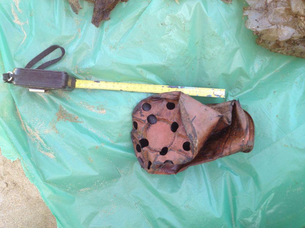 Otros objetos hallados en el interior del cetáceo.