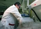 Una terapia celular hace remitir en adultos una leucemia muy grave