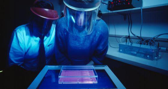Investigadores de EE UU especializados en cáncer utilizan una luz ultravioleta para estudiar el ADN.