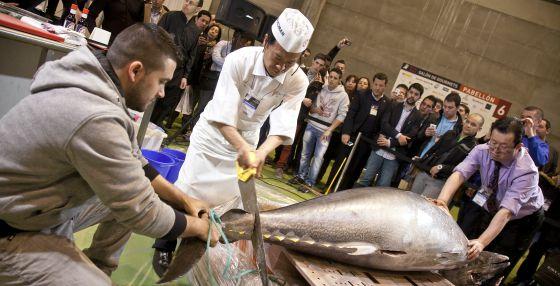 Imagen de un atún de 163 kilos en la XXVII edición del Salón de Gourmets, en Madrid.
