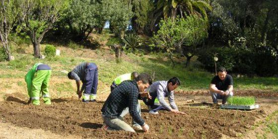 La Fundación Verdallar quiere comprar un triciclo eléctrico para distribuir las hortalizas de su huerto urbano.