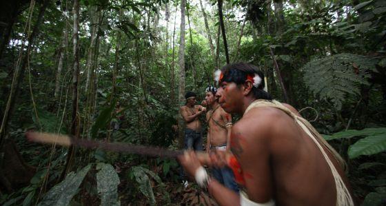 Los indios waorani habitan la reserva de Yasuní en la región amazónica de Ecuador.