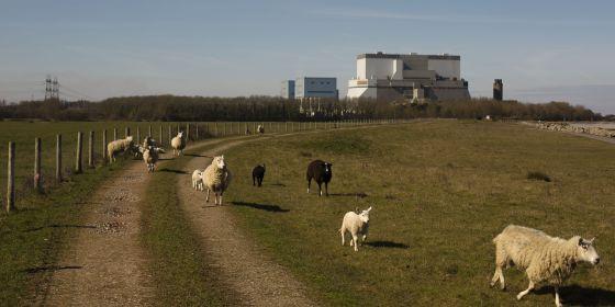 Los dos reactores de Reino Unido se pondrán en marcha en 2023.