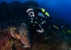 Cousteau, bajo el mar de Cabrera