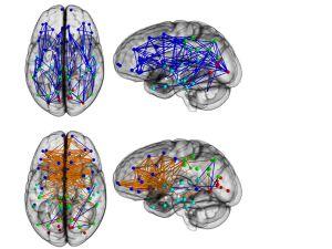 Por qué ellos se orientan mejor y ellas tienen más memoria