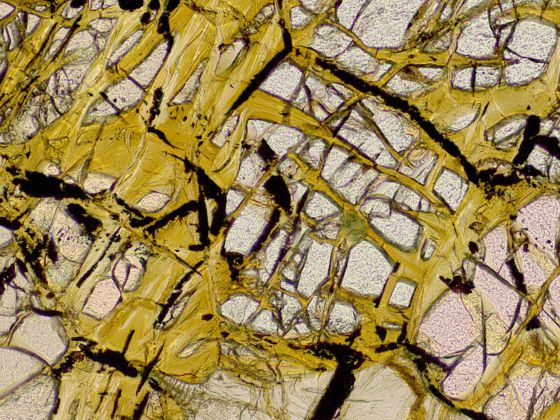 Proceso de serpentinización del mineral olivina (en amarillo) por el que los microbios obtienen hidrógeno.