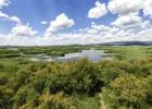 El Consejo de Estado enmienda toda la ley de Parques Nacionales