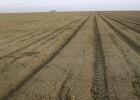 Obama anuncia en Fresno ayudas millonarias contra la sequía