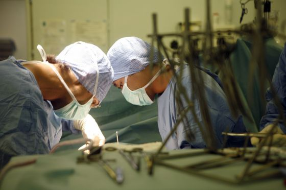 In Spain, it is illegal to purchase or sell human organs for profit.