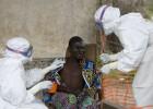 Guinea prohíbe el consumo de murciélagos tras el Ébola