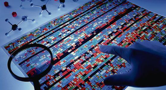 El proyecto de secuenciación del genoma humano hizo accesible universalmente el conocimiento de todos los genes de la cadena del ADN.