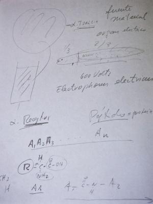 Esquemas explicativos escritos por el doctor Possani durante la entrevista.